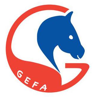 Association GEFA